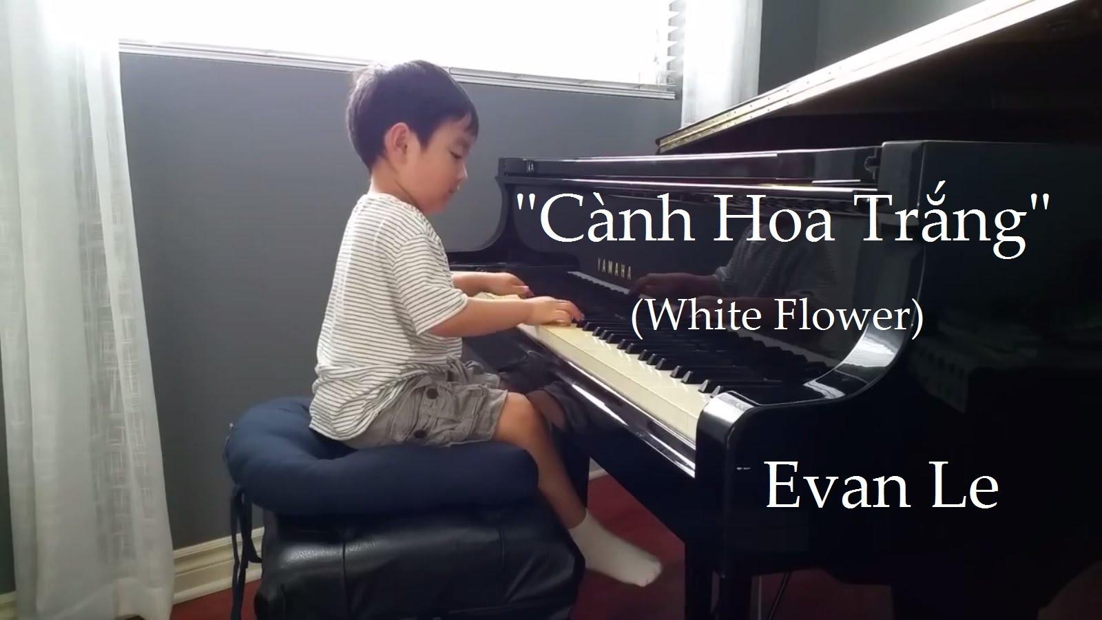 Evan Le –  Cành Hoa Trắng