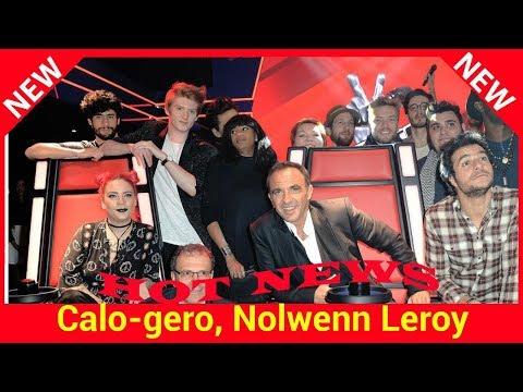 Calogero, Nolwenn Leroy, Christophe Maé dans les coachs de The Voice