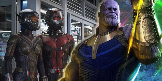 Bằng chứng cho thấy sự thừa thãi của Ant-Man and the Wasp trong vũ trụ Marvel - Ảnh 2.