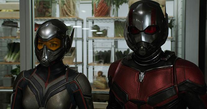 'Người kiến và Chiến binh ong': Siêu anh hùng nhưng đầy tình cảm gia đình - ảnh 1